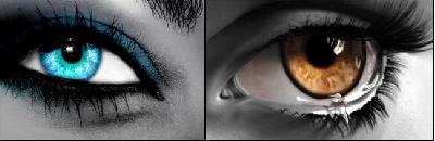 Braune Und Blaue Augen Sind Die Schönsten Auf Der Welt Gruppe